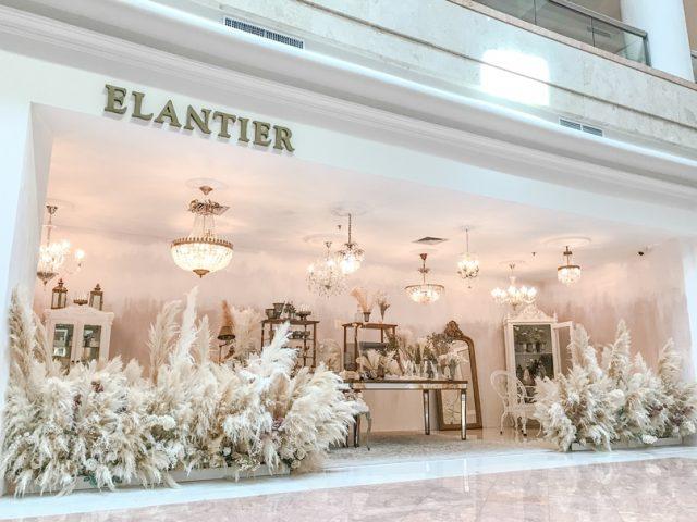 Elantier & Pass The Token Pop-up Store
